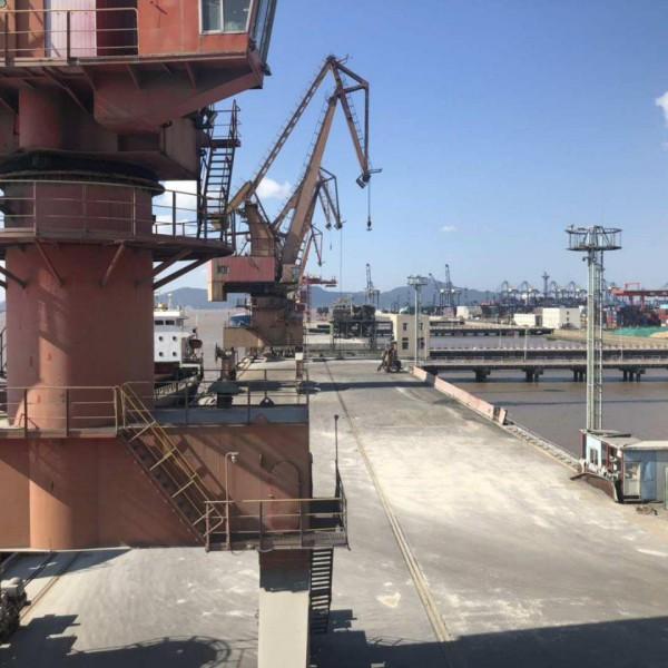 «Морской Порт Санкт-Петербург» и работа с эко-хопперами